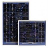 BPSX-10M 12 Volt 10W Solar Module